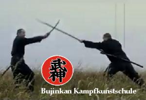Ninja-Teens